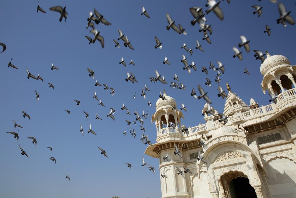 INDIA - MAGICKÝ RAJASTHAN <br> DEŇ 11: JODHPUR <br> - Návšteva Mandore <br> - Pevnosť Mehrangarh <br>  - Staré modré mesto <br>