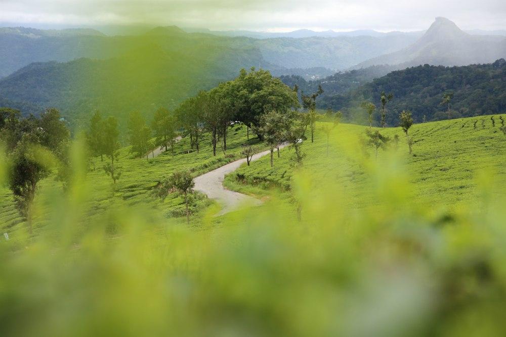 AJURVÉDA A JÓGA S IVANOU BALDO<br>  DEŇ 3: MUNAR<br>  - Ecotones Camps<br>  - Prechádzka horskou dedinou<br>