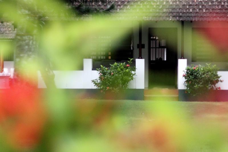 HARIVIHAR HERITAGE HOMESTEAD <br> Calicut, Kerala, India <br> - <br> Ranní meditace v záhradě