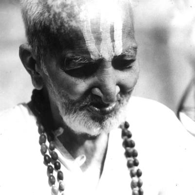T. Krishnamacharya: <br>Vyjímečný jogín