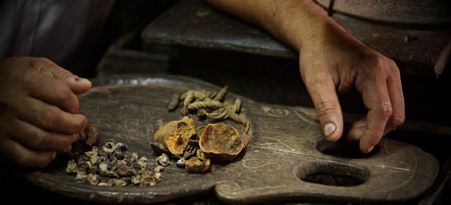 Sekání léčiv umístěných na kusu kmene starého stromu.