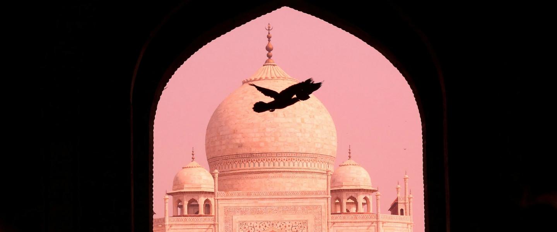 ZLATÝ TROJÚHELNÍK INDIE